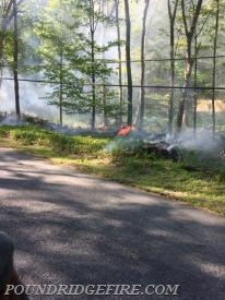 Pictures of the brush fire prior to NYSEG de-energizing the power lines.